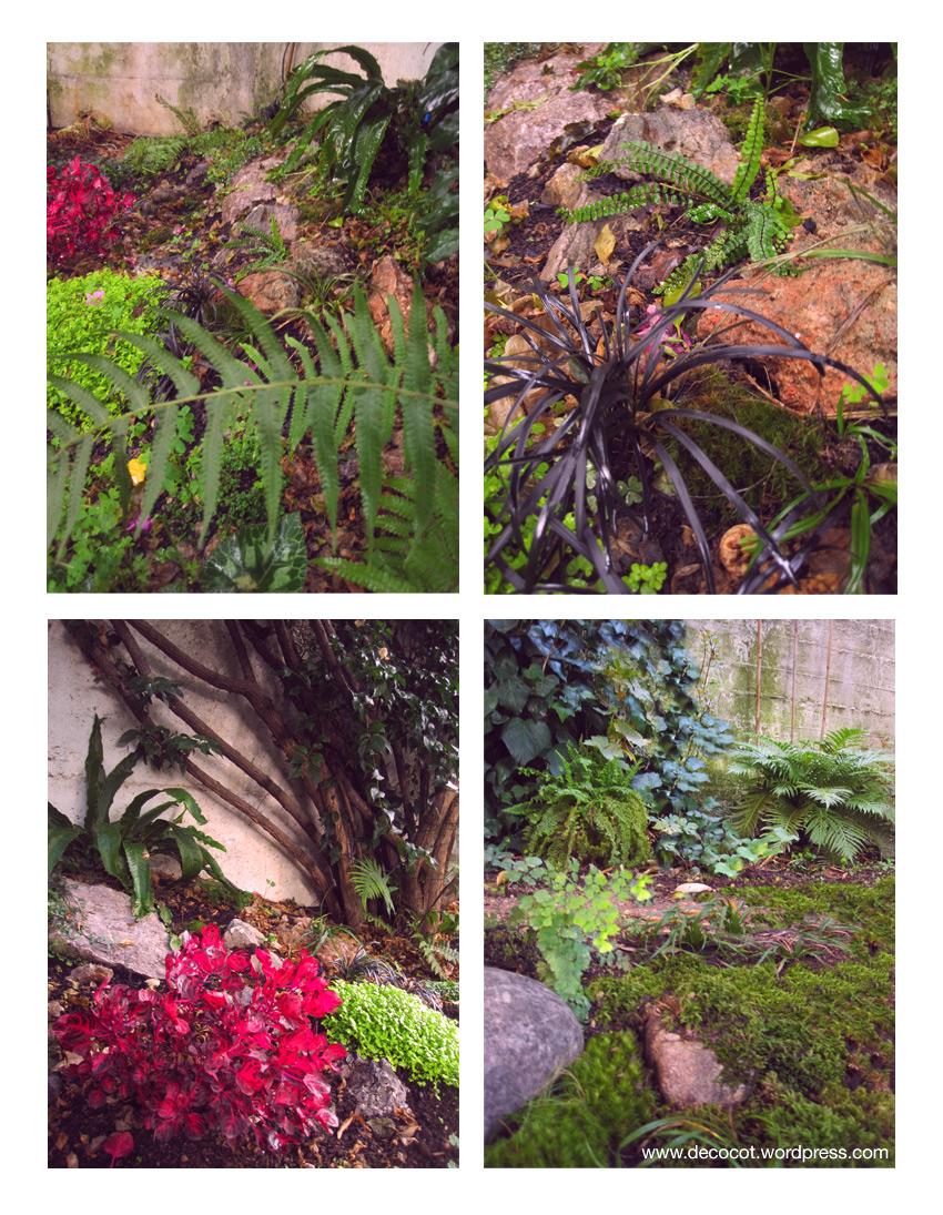 jardin ombre sous bois rocaille aménagement